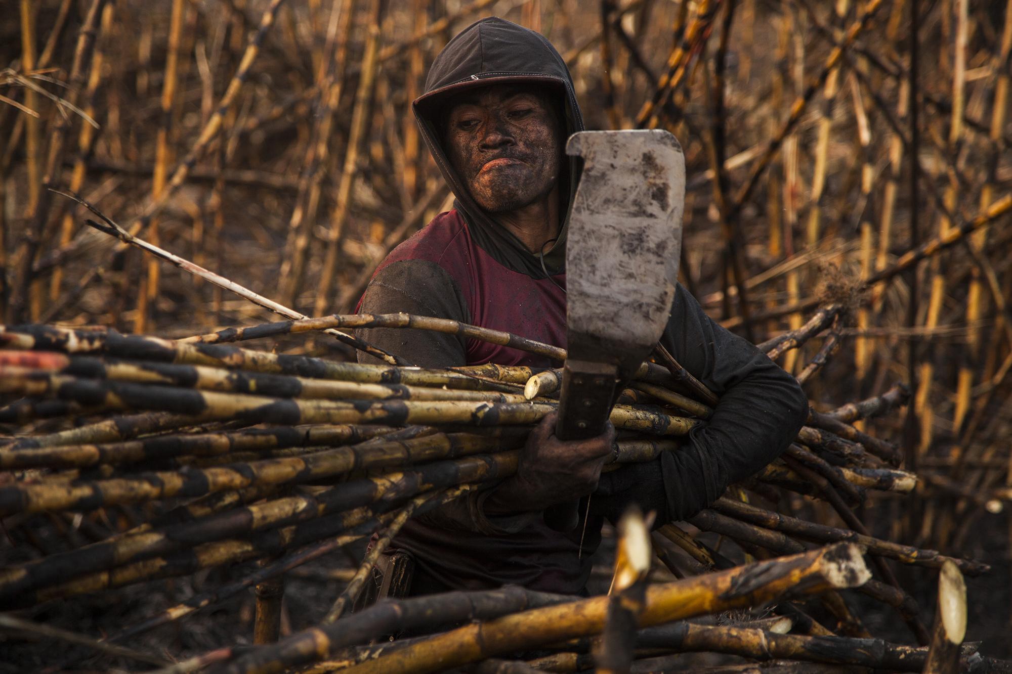 e5849089b6ff Diego Velasco (28) es un trabajador temporal del ingenio Madre Tierra